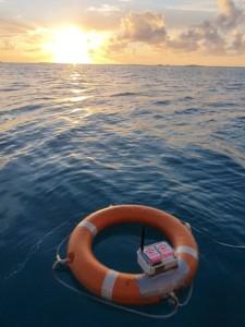 Avatar Under Sea